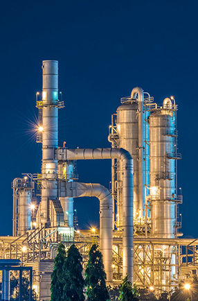 Differentiated performance in the chemical and petrochemical sector